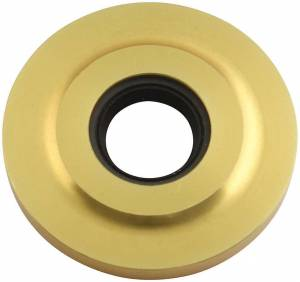 Cam Seal Plate Gold 2.253