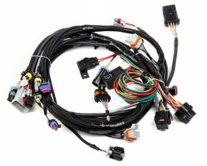 HOLLEY #558-102 Main Wiring Harness LS1 & LS6