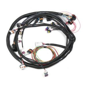 HOLLEY #558-103 Main Wiring Harness LS2 & LS3