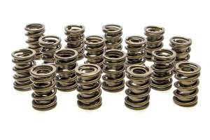 PAC RACING SPRINGS #PAC-1901 Valve Springs - HR Series (16)