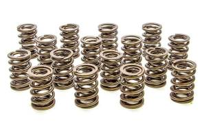 PAC RACING SPRINGS #PAC-1904 Valve Springs - HR Series (16)