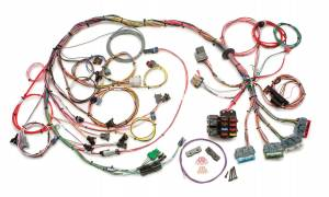 PAINLESS WIRING #60502 LT-1 Wiring Harness