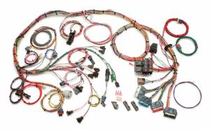 PAINLESS WIRING #60505 LT-1 Wiring Harness 92-97 5.7L