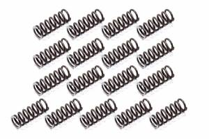 TSR RACING PRODUCTS #APG-2832HD P/G HD Reverse Springs